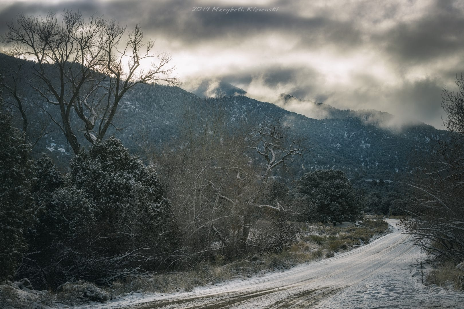 2019 Copyright MaryBeth Kiczenski. By the time I woke up, most of the snow was already melting.  This is the dirt road that led to the Airbnb I was staying at.  Front yard views to envy, that's for sure!