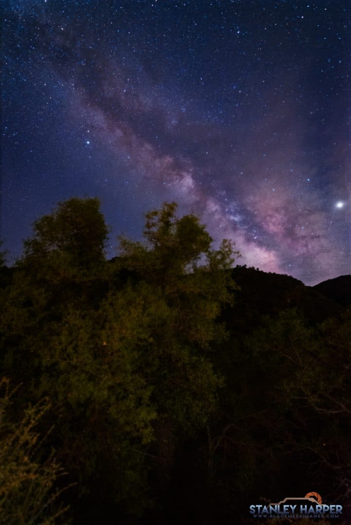 Sequoia National Park Milky Way