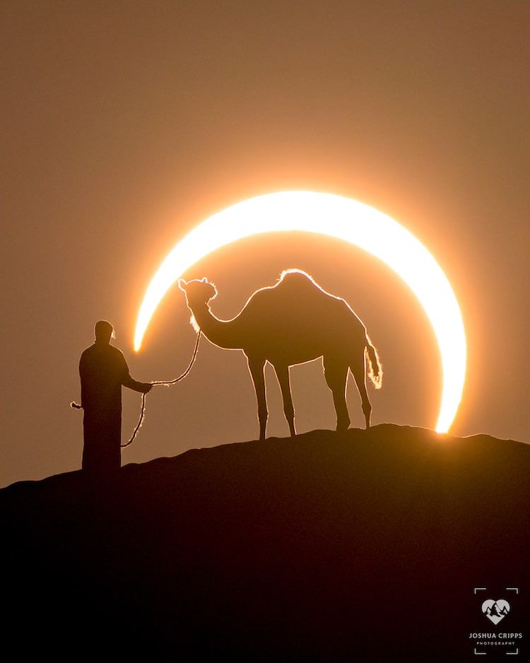 Joshua Cripps PERFECTLY illustrates the power of perspective in this epic shot of an annular solar eclipse. Courtesy of https://www.joshuacripps.com/