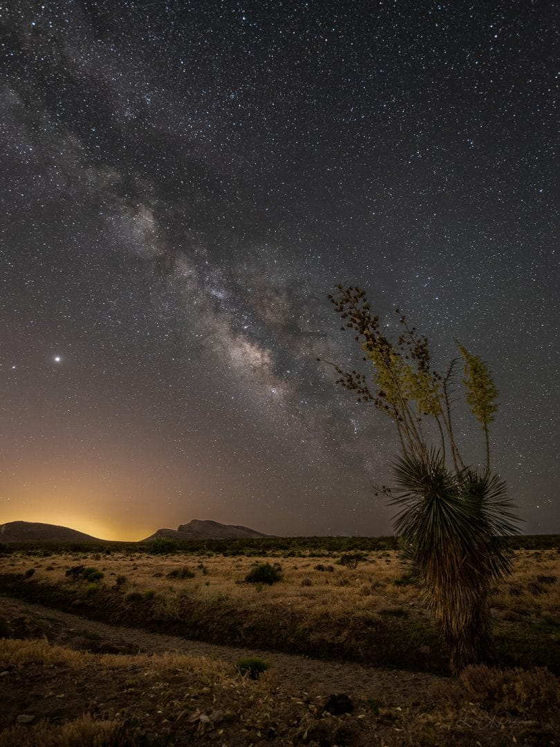 """Yucca Bloom under Milky Way"" by Lisa Phillips. Over the Memorial Day weekend, I finally got out to shoot the Milky Way for the first time in 2020. The high winds early in the evening put a damper on shooting for awhile. At about 2 am they settled down enough to get a couple hours of shooting in. This image is a blend of several images taken at the same location. One long exposure for the foreground, and about 6 images stacked in Sequator for the sky. I then blended the two images together in Photoshop. #milkywayphotographers"