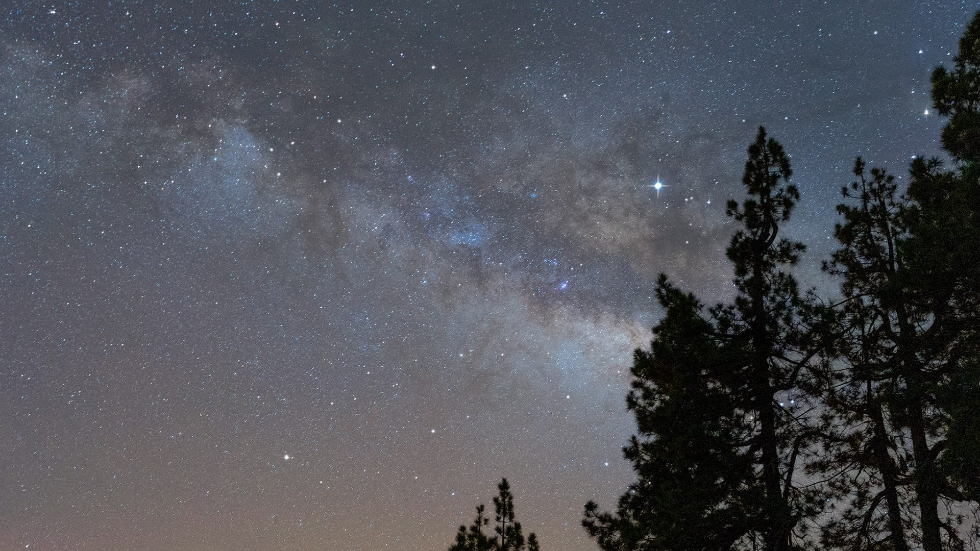 Milky-way-and-trees